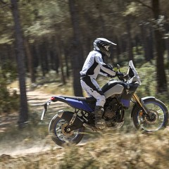 Foto 39 de 53 de la galería yamaha-xtz700-tenere-2019-prueba en Motorpasion Moto