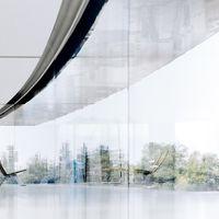 Los paneles de cristal del Apple Park son tan grandes y transparentes que los empleados se están chocando con ellos