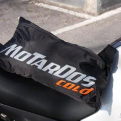 motardos-cold
