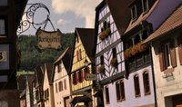 Kintzheim, un pueblecito de Alsacia con rapaces y viñedos