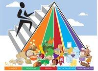 ¿Es correcta la pirámide de alimentación?