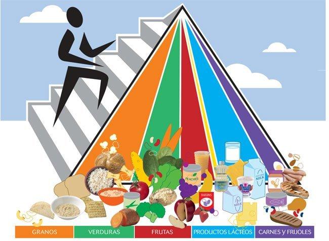 ¿Es correcta la pirámide de alimentación actual?