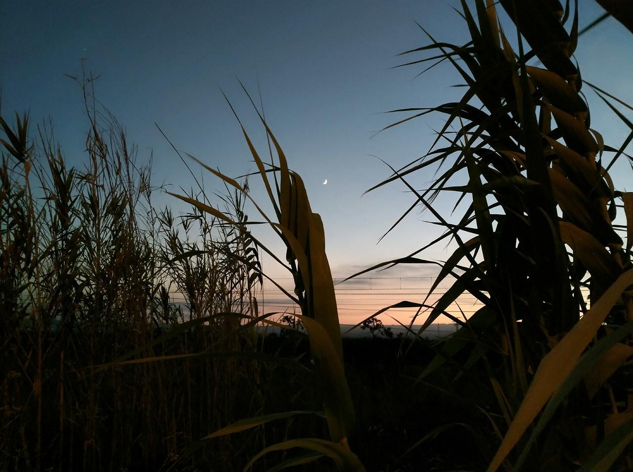 Foto de Fotos con el ASUS ZenFone AR (24/34)