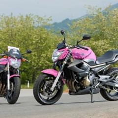 Foto 2 de 51 de la galería yamaha-xj6-rosa-italia en Motorpasion Moto