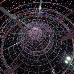 Foto 24 de 31 de la galería mas-fotografias-con-el-samsung-galaxy-a70 en Xataka Móvil