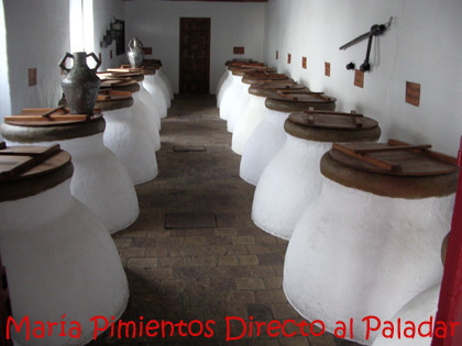 Aceite de Oliva Virgen Extra, antioxidante verde