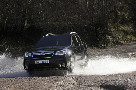 Subaru Forester 2013, vista frontal