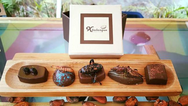 Xbalanque Chocolates 3