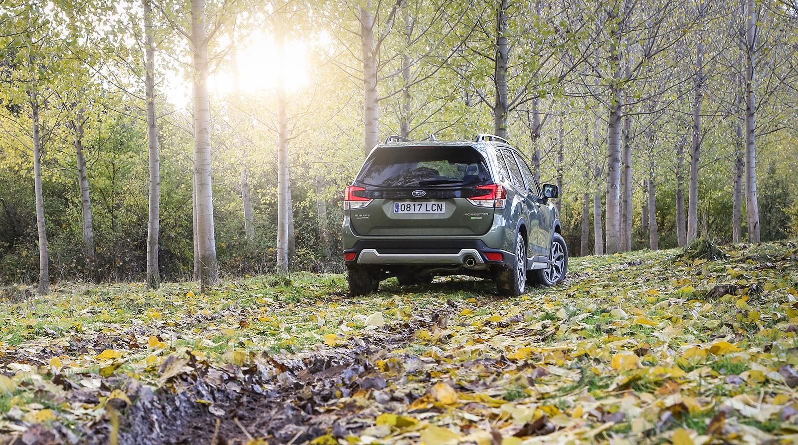 Foto de Subaru Forester Eco Hybrid 2020 (7/22)