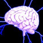 La Neurociencia entra en su siguiente nivel: llega el Neurocapitalismo. Y sí, entraña sus (grandes) riesgos
