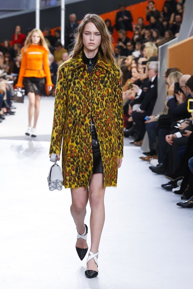 Foto de Louis Vuitton otoño-invierno 2015-2106 (21/47)