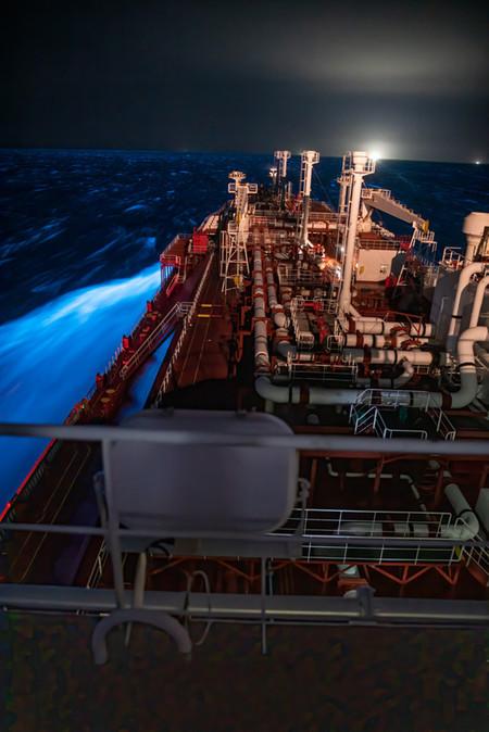 Bioluminescence 1