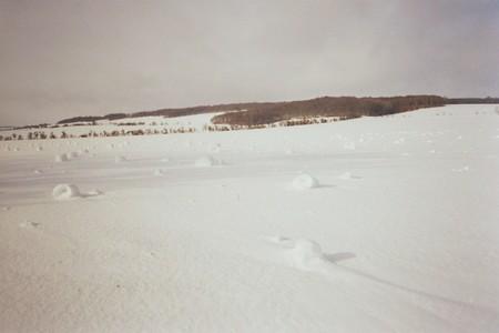 Umgeworfene Schneerige 4 Foto Olaf Parnieske