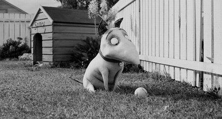 'Frankenweenie', primeras imágenes de lo nuevo de Tim Burton