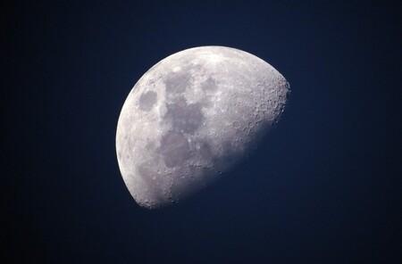 """Varios científicos quieren enviar un """"arca de Noé"""" a la Luna con 335 millones de muestras de esperma y óvulos de diversas especies"""