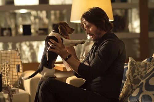 'John Wick (Otro día para matar)': Keanu Reeves reactiva su carrera con el origen de un nuevo icono del cine de acción