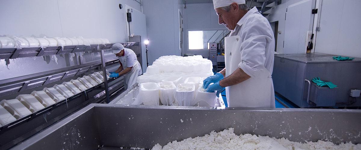 Estos son los mejores quesos del mundo, según los World Cheese Awards (y tres de 16 son españoles)