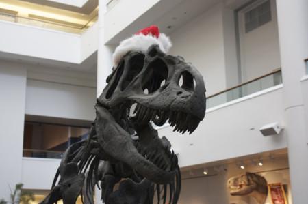 Recuperar especies animales extinguidas: ¿cuándo podremos tener un velociraptor como animal doméstico?