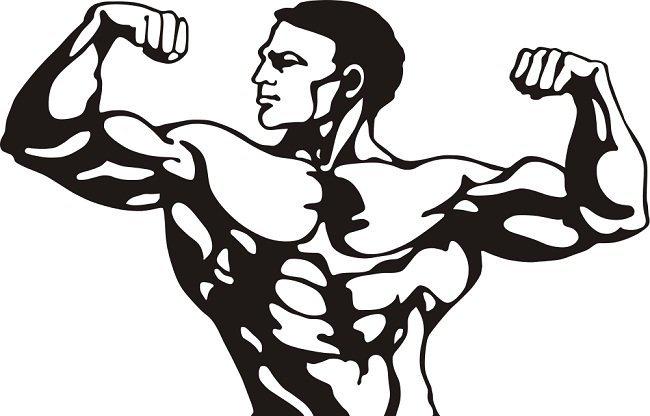 fitness1.jpg