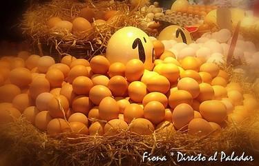 El huevo es saludable y bueno para perder peso. Derribando mitos