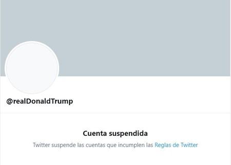 Real Donald Trump Suspendida