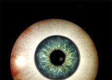 ver un punto negro en la visión