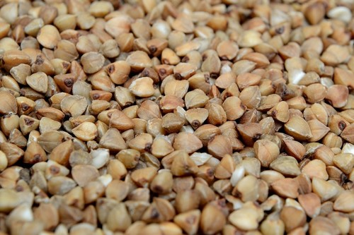 Trigo sarraceno: propiedades, beneficios y su uso en la cocina