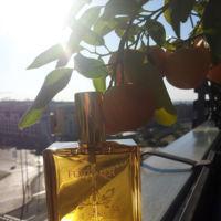 El Aceite 5 Sens de René Furterer, la espectacular alquimia de 5 aceites vegetales nutritivos