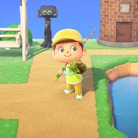 Animal Crossing: New Horizons: lista con todos los peces de mayo