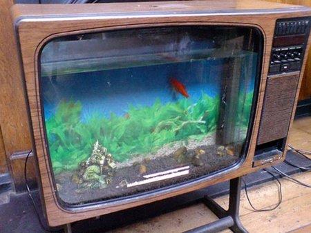 Hazlo tú mismo: una pecera dentro de una televisión antigua