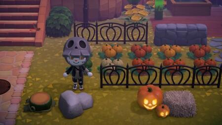 Animal Crossing: New Horizons: cómo conseguir calabazas y para qué sirven