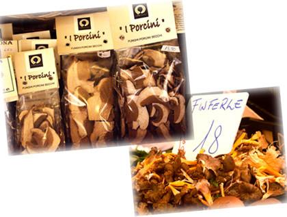 funghi italia1