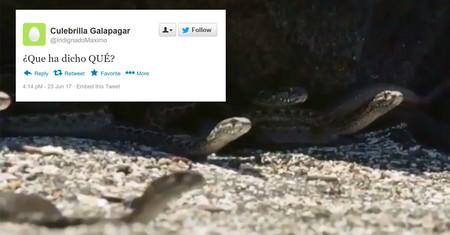 Miles de serpientes sedientas de sangre: la parodia de Planeta Tierra que resume a la perfección qué es Twitter