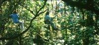 John McTiernan: 'Los últimos días del edén'