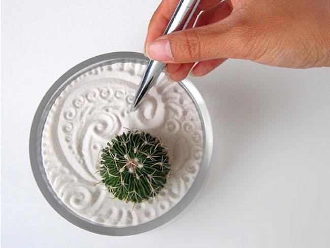 Hazlo t mismo un jard n zen con un c ctus y arena decorada - Arena jardin zen ...