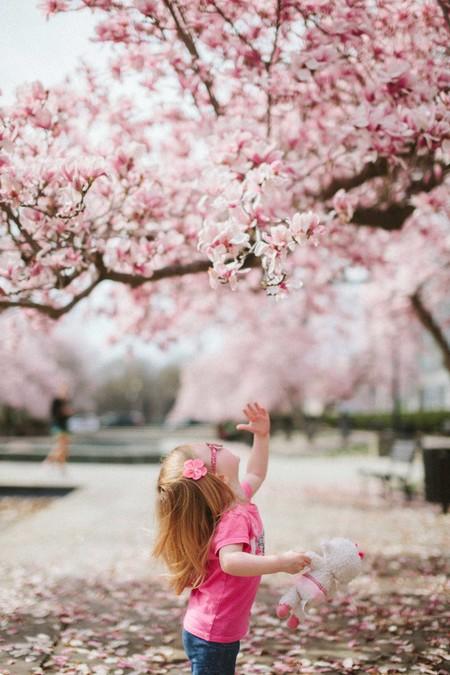 niña mirando flores de almendro