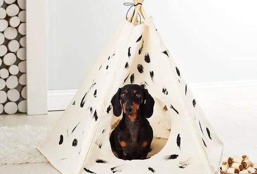 Si tu perro es uno más de la familia, estos 11 regalos para él serán una buena pista para Papá Noel