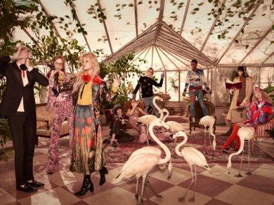 Una invasión de flamencos refleja el gusto recién descubierto de Gucci por lo exótico