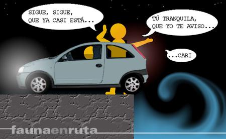 fauna en ruta: aparcar el coche