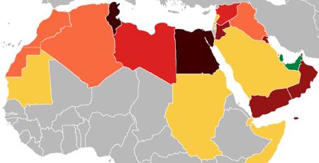 Túnez: La revolución árabe en la red (I)