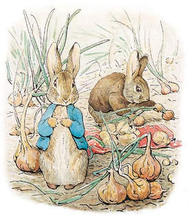 peter-rabbit-onions.jpg
