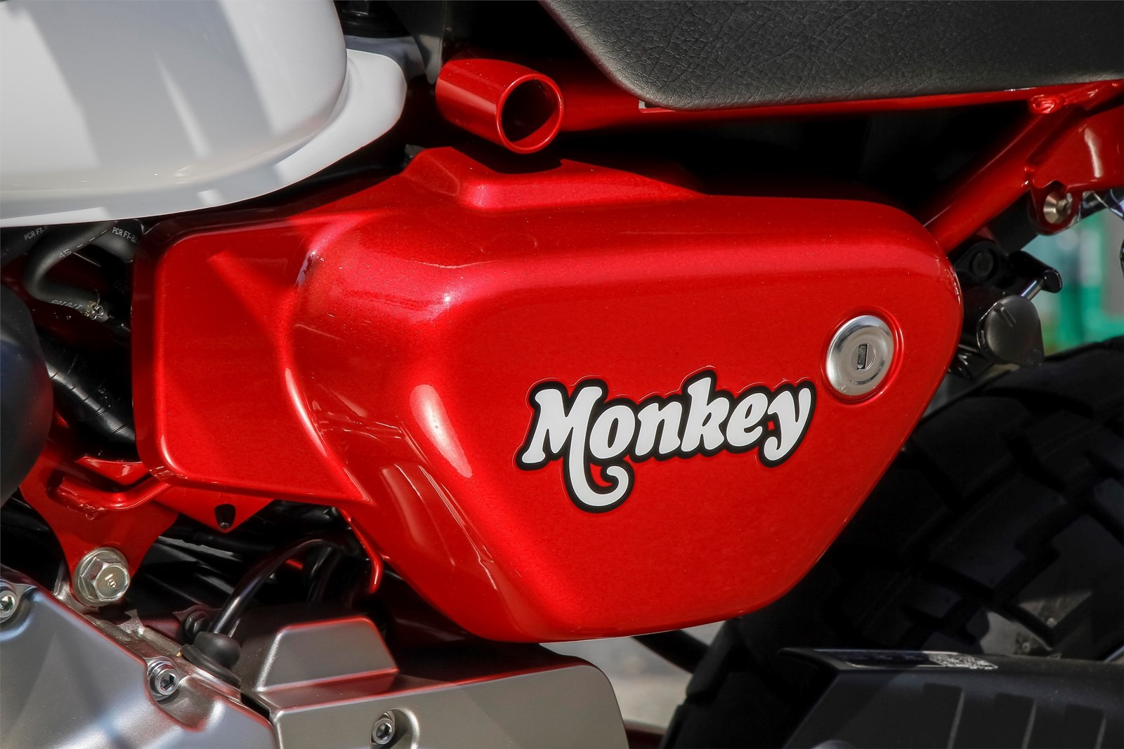 Foto de Honda Monkey 125 2018 (18/47)