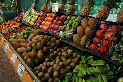 Comparativa entre frutos salvajes y frutos procesados