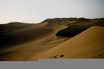 Desierto: imagen de la semana