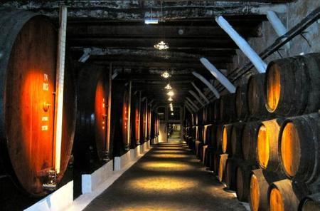 Descubriendo Oporto: las bodegas