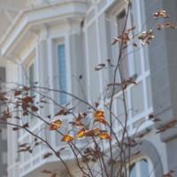 ¿Surfero haciendo turismo en Asturias? Ewan House es tu lugar para dormir