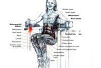 Guía de ejercicios abdominales (IX): Elevaciones de rodillas en paralelas