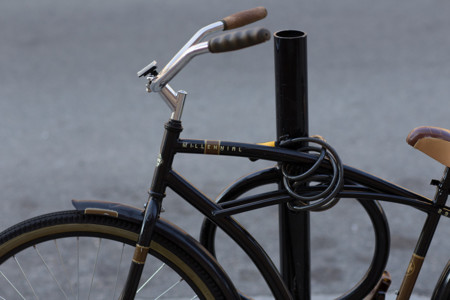 Millennial Bike
