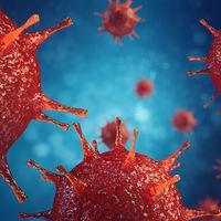 Tras 12 años, nos encontramos frente al segundo caso de un hombre con remisión permanente del virus del VIH