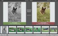 PhotoSweeper, que una aplicación elimine todas las fotografías duplicadas por ti